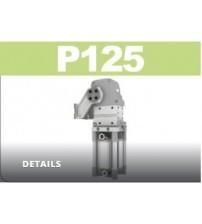 P125 Devirme grubu