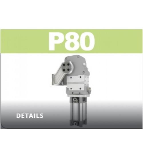 P80 Devirme grubu